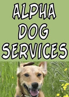 Dog Almighty!  Alpha Sog Services - Dog Walker Chorley